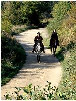 Ballade à cheval dans la campagne avoisinante